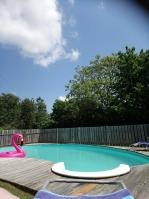 piscine lilas